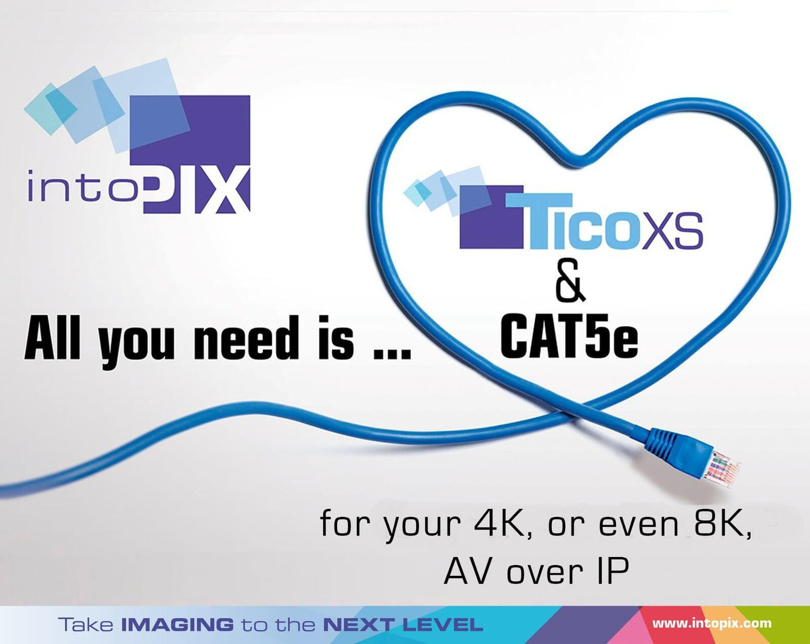 CAT5, CAT5e, CAT6, ... What is the best option for you ?